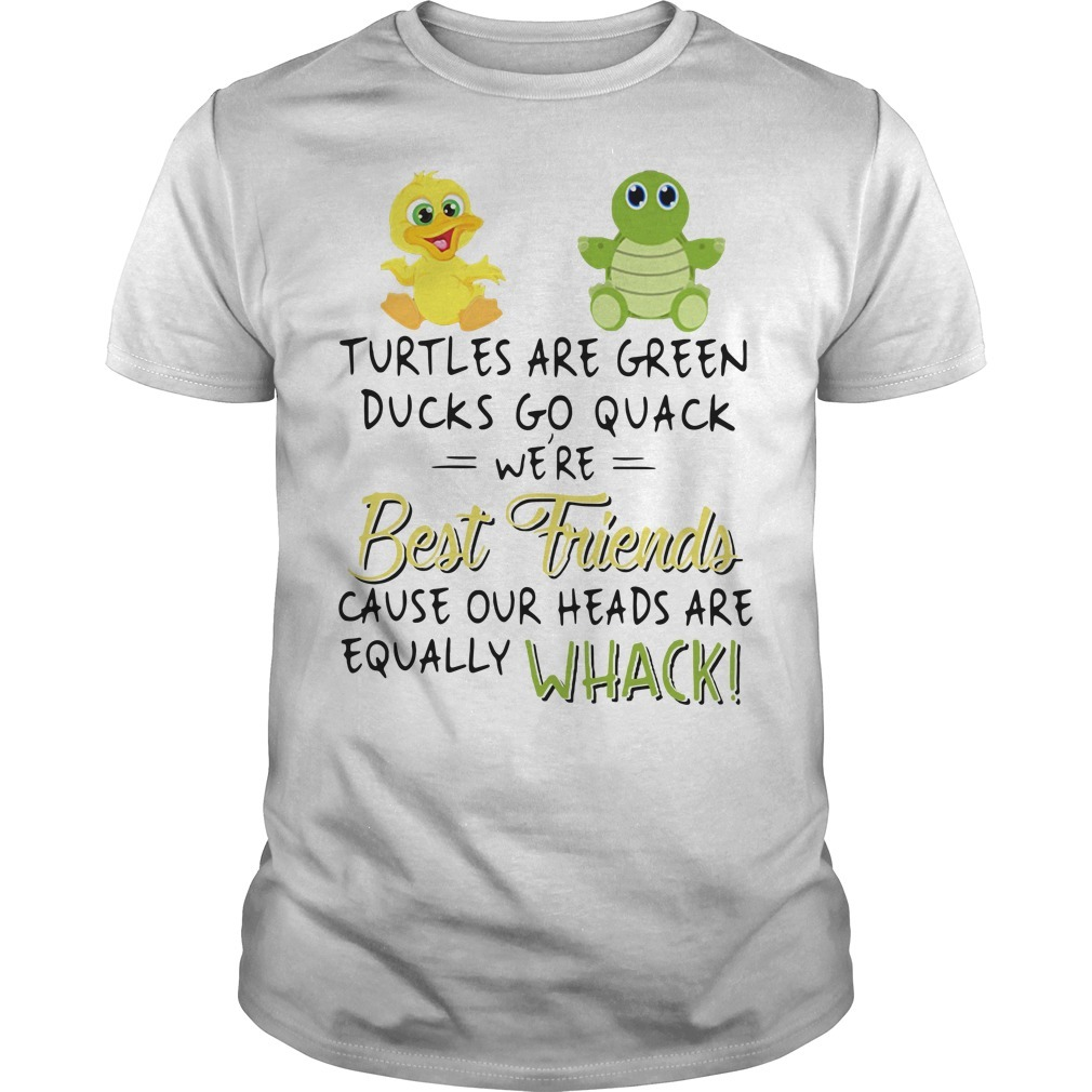 Turtle are green ducks go quack we're best friends cause our heads are equally whack Guys shirt