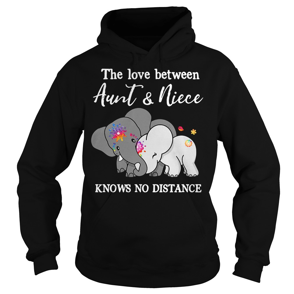Elephants the love between aunt and niece knows no distance Hoodie