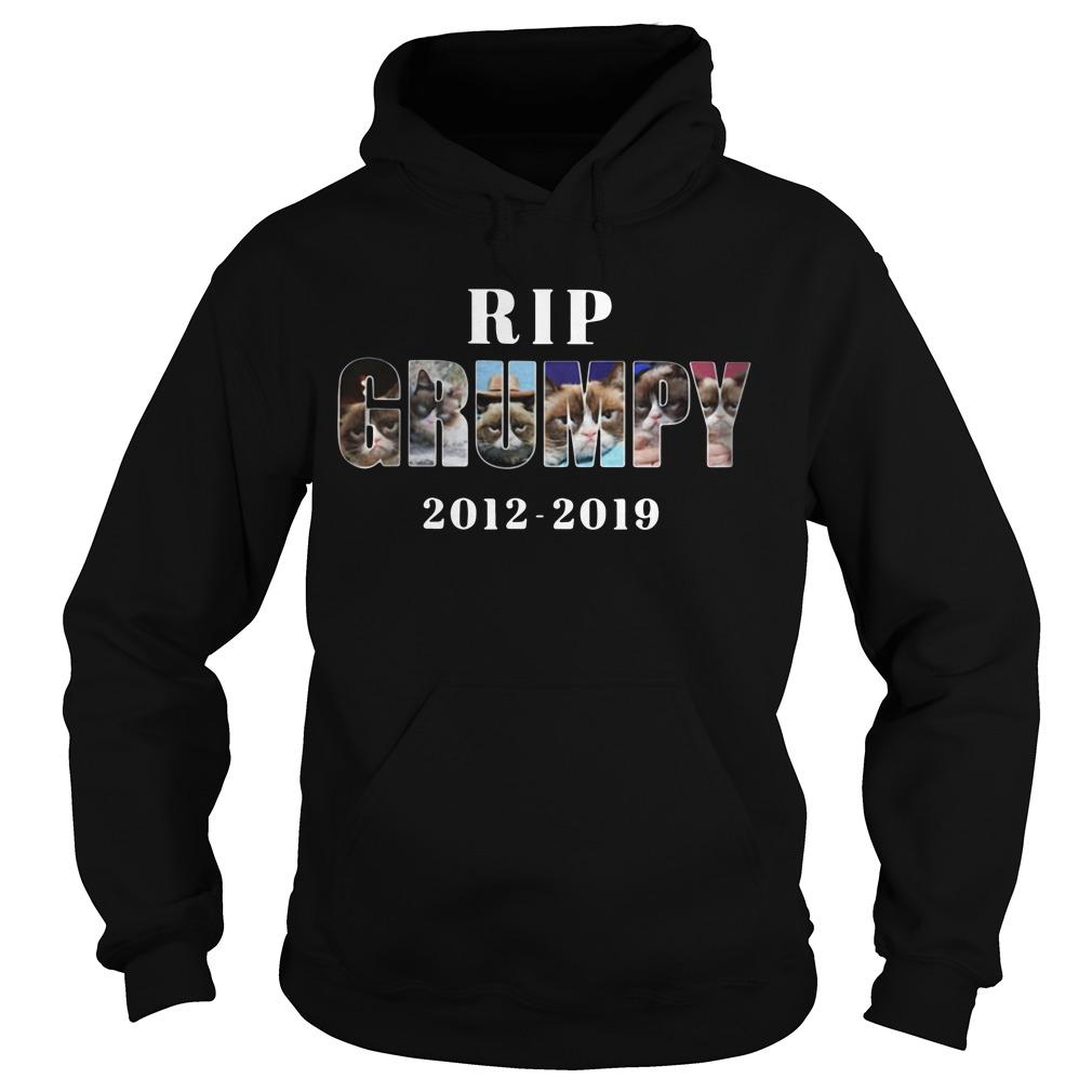 Rip Grumpy cat 2012-2019 Hoodie