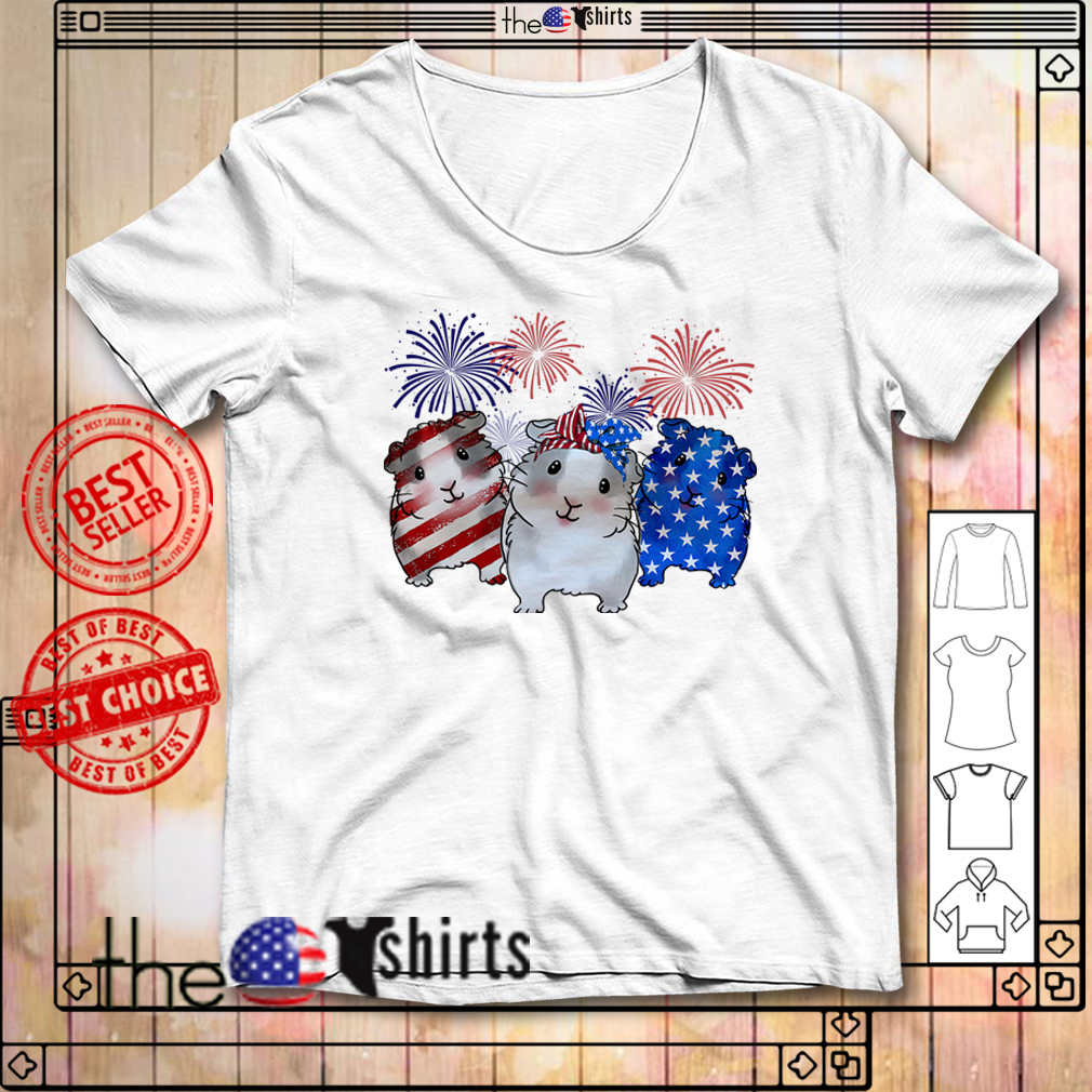 Guinea pigs red white and blue American flag shirt