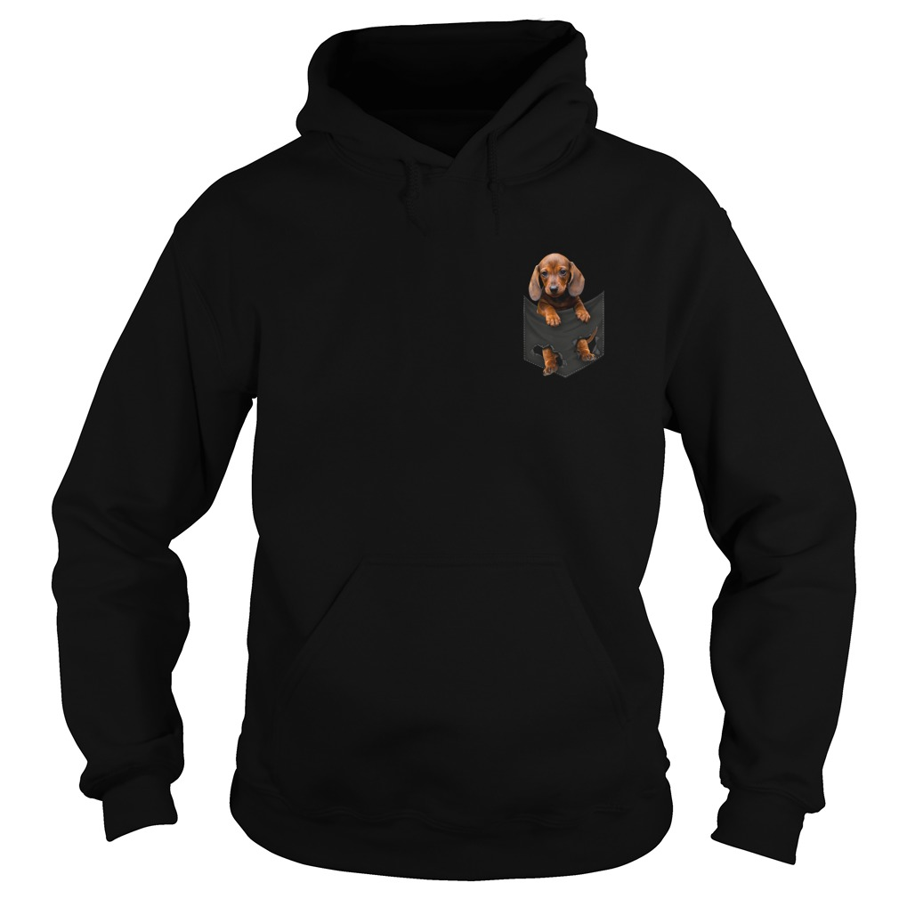 Dachshund in the pocket Hoodie