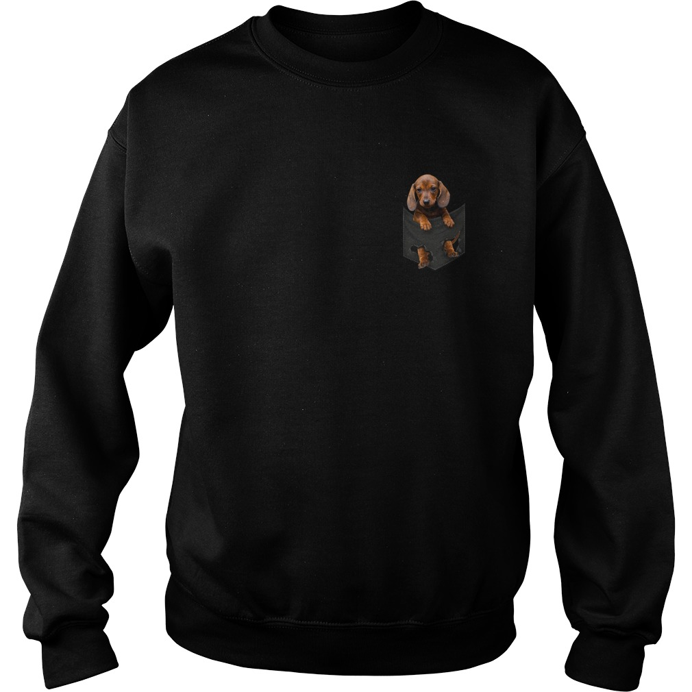 Dachshund in the pocket Sweater