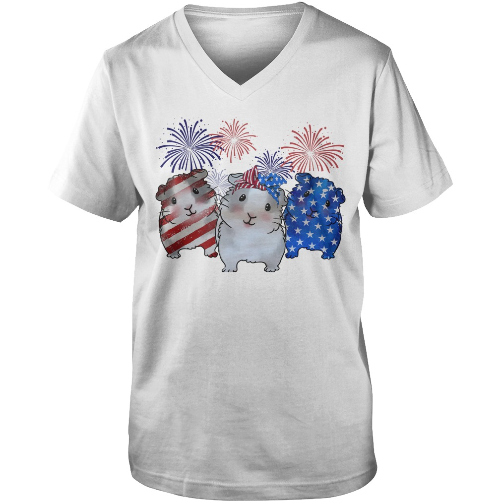 Guinea pigs red white and blue American flag Guy V-Neck