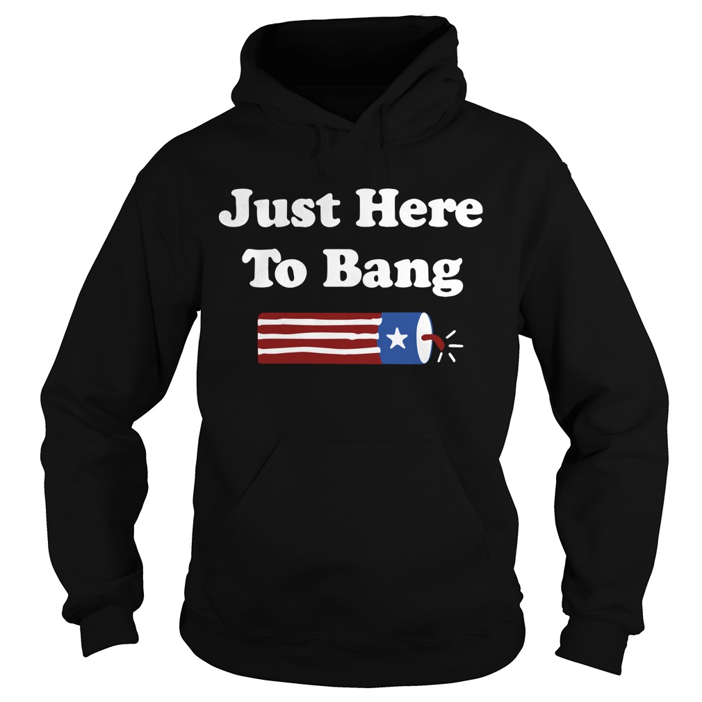 4th Of July independence day just here to bang Hoodie