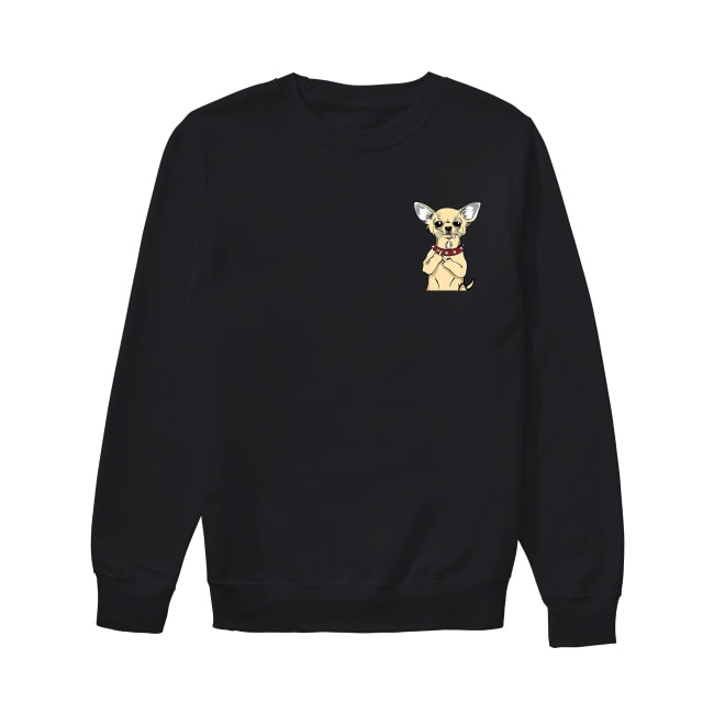 Chihuahua in pocket Sweater