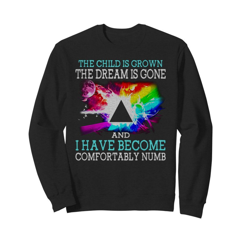 Pink Floyd the child is grown the dream is gone I have Sweater