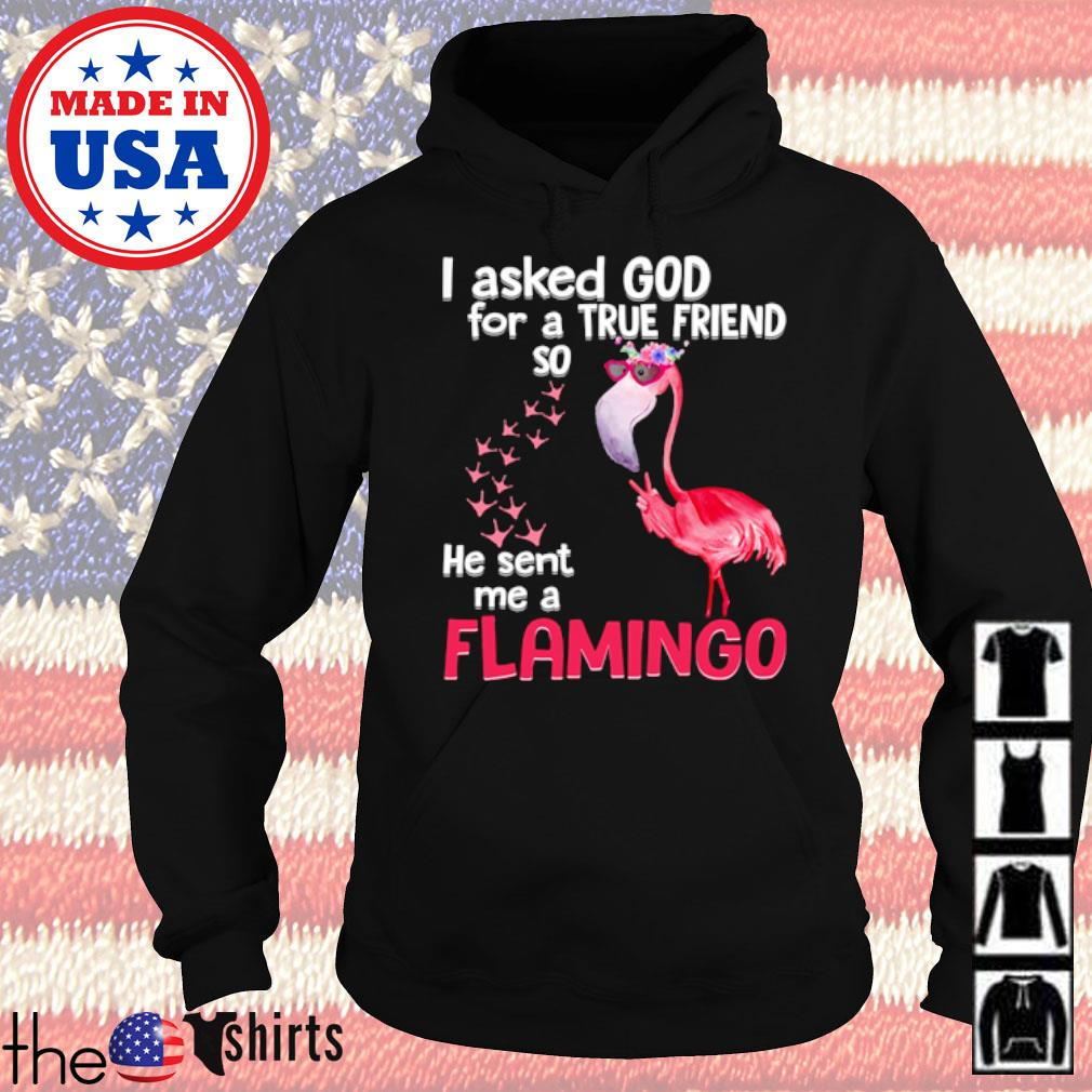 I asked God for a true friend so he sent me a flamingo s Hoodie