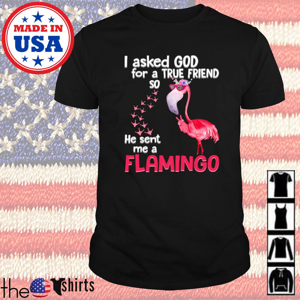 I asked God for a true friend so he sent me a flamingo s shirt
